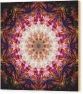 Orion Nebula I Wood Print