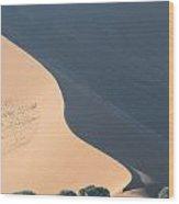Orix Under The Dune Wood Print