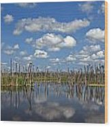 Orlando Wetlands Cloudscape 3 Wood Print