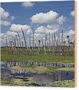 Orlando Wetlands Cloudscape Wood Print by Mike Reid