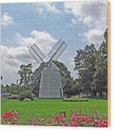 Orleans Windmill Wood Print