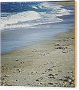 Ormond Beach Wood Print