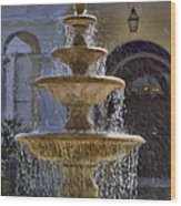 Ormond Water Fountain Wood Print