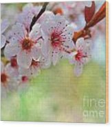 Ornamental Plum II Wood Print