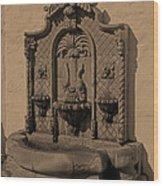 Ornate Wall Fountain Wood Print