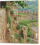 Orvieto Battlement Wood Print