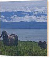 Osa Cattle Wood Print