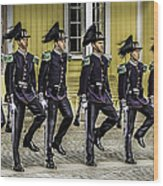 Oslo Royal Palace Guards Wood Print