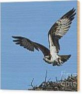 Osprey 9 Wood Print