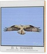 Osprey Hovering Over Prey Wood Print