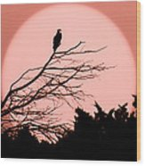 Osprey Moon Wood Print