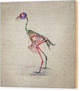 Osteology Of Birds Wood Print by Aged Pixel
