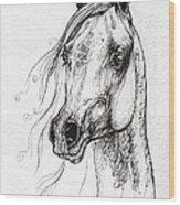 Ostragon Polish Arabian Horse 3 Wood Print