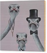 Ostrich Family Wood Print