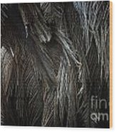 Ostrich Feather Texture Wood Print