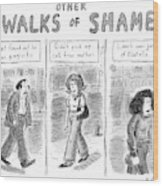 Other Walks Of Shame -- Just Found Wood Print