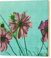 Otherworldly Cosmos Flowers In Pink And Green Wood Print