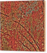 Otherworldy Light Traces Wood Print