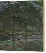 Ottawa Canyon Wood Print