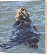Otter 2 Wood Print