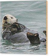 Otter At Play Wood Print