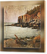Otter Cliffs Acadia National Park Wood Print