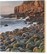 Otter Cliffs At Sunrise Wood Print