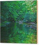 Otter Creek Reflection  Wood Print