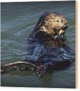 Otter Wood Print