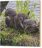 Otter Family Fun Wood Print