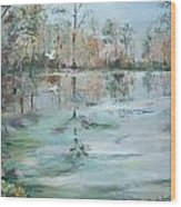 Otter Springs Wood Print by Dorothy Herron