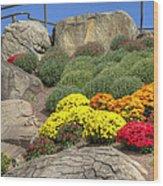 Ott's Greenhouse - Chrysanthemum Hill - Schwenksville - Pa Wood Print