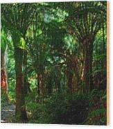 Otway Rainforest Wood Print