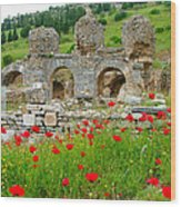 Our Entry Into Ephesus And Its Baths-turkey Wood Print