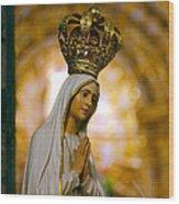 Our Lady Of Fatima Wood Print
