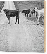 Our Way Or The Highway Bw Wood Print