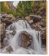 Ouray Wilderness Wood Print