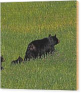 Out For A Walk Wood Print