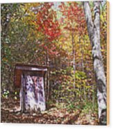Out House In The Fall Wood Print