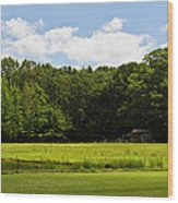 Out In The Country Wood Print