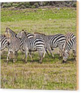 Out Of Africa  Wood Print