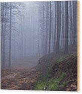 Out Of The Mist - Casper Mountain - Casper Wyoming Wood Print