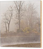 Out Of The Mist Wood Print