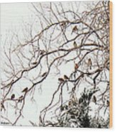 Out On A Limb First Snow Wood Print