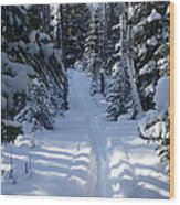 Out On The Trail Wood Print by Sandra Updyke