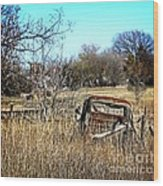 Out To Pasture 3 Wood Print