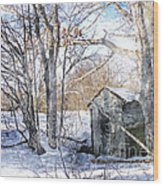 Outhouse In Winter Wood Print
