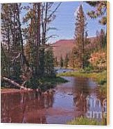 Outstanding Yellowstone National Park Wood Print by John Malone