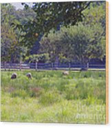 Over In The Meadow Wood Print