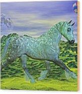 Over Oz's Rainbow Wood Print